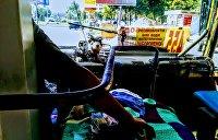 СМИ: Проезд в маршрутках Киева снова подорожает