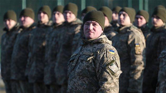 Пришла пора принимать «диктаторские законы» Януковича