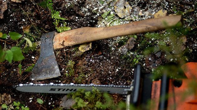 Под Славянском были обстреляны лесорубы