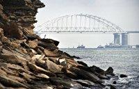 Корабли НАТО не зайдут в Азов без согласия России — власти Крыма