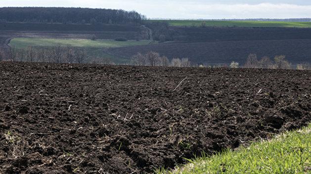 «Денег не хватает». Глава Минэкономразвития Украины отказал в помощи аграриям