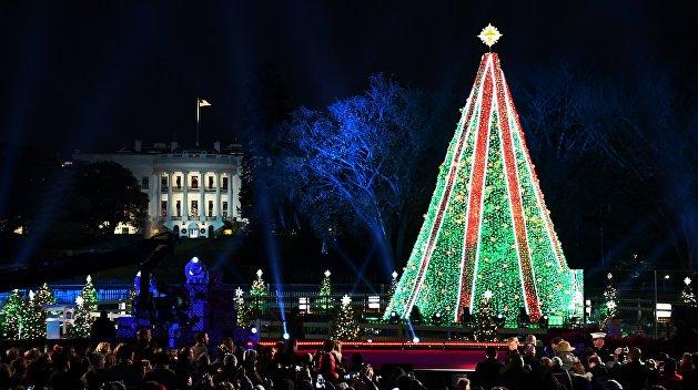 Главная рождественская ёлка США осталась без подсветки из-за Трампа