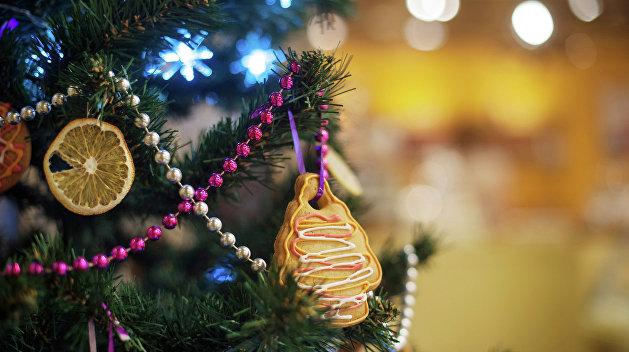 В Борисполе рухнула огромная новогодняя ёлка