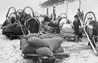 День в истории. 11 января: 100 лет назад большевики ввели продразверстку