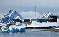 Антарктика – за Порошенко: Зеленский с треском проиграл на станции «Академик Вернадский»
