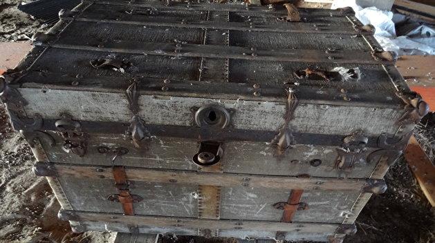 Денежное дерево: Киевляне нашли клад во время посадки саженцев