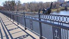 В Виннице с моста умыкнули скульптуру кота