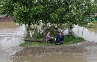 В Прикарпатье сотни домов залило водой