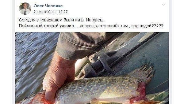 «Восставшая из мёртвых»: под Днепром из реки выловили щуку-франкенштейна