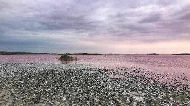 Украинское Мертвое море оказалось на грани катастрофы — СМИ