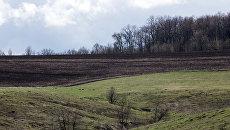 Из-за теплой зимы на украинских полях могут завестись сорняки и грызуны