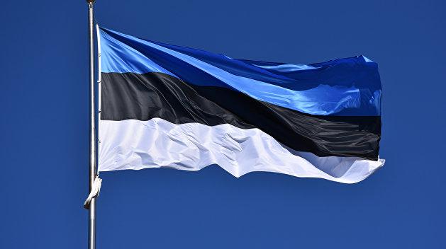 Белорусский эксперт сказал, как Эстония в вопросе республики лезет «поперек батьки в пекло»