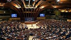Украинская делегация в ПАСЕ сменила руководителя