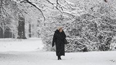 Синоптики рассказали, когда на Украину придет настоящая морозная зима