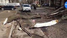 Мощный ураган в Одессе: шокирующие последствия — видео