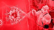 Пандемия в цифрах и фактах. Бюллетень коронавируса на 21:00 23 марта