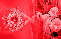 Пандемия в цифрах и фактах. Бюллетень коронавируса на 12:30 29 августа