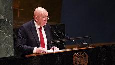 Небензя: США превратили Украину в свой протекторат