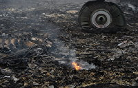 «Видно было истребитель»: опубликовано новое видео со свидетелями крушения МН17