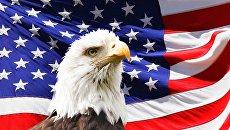 Злобин назвал главный плюс США