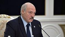 Семь европейских стран не признали Лукашенко легитимным президентом Белоруссии