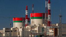 Экономист объяснил, что Литва хочет скрыть борьбой с БелАЭС