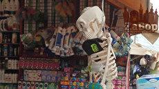 В Запорожье скелет штрафовал покупателей за отсутствие маски