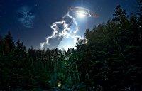 Бегство животных, летающие тарелки, послание Теслы: мистические подробности чернобыльских событий