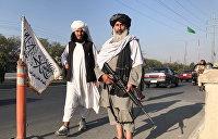 Сын врага СССР, Порошенко и хитрый маршал: кто вносит лепту в борьбу с «Талибаном»*