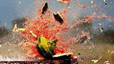 Отчаяние: херсонские фермеры разбивают урожай арбузов