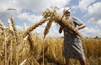 «Земля - олигархам»: Эксперт рассказал, как на Украине готовятся лишить крестьян земельных участков