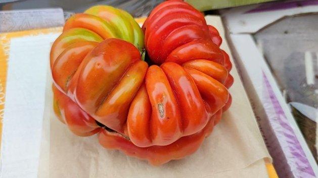 Украинец рассказал о торговле помидорами-мутантами в Киеве - фото