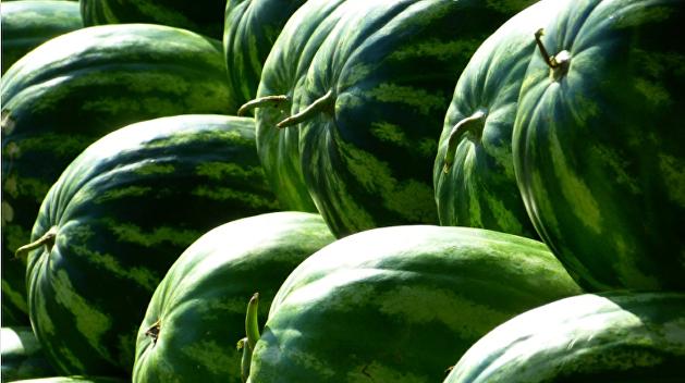 Прошлогодний арбуз: житель Днепра поделился шокирующей покупкой из супермаркета