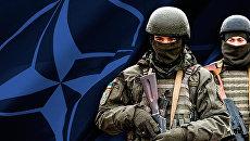 Попробовать Россию на зуб. НАТО может гибридно принять Украину
